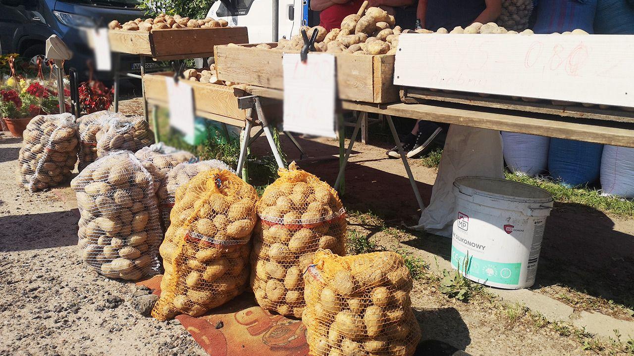 Wzrost cen skupu podstawowych produktów rolnych (fot. Shutterstock)