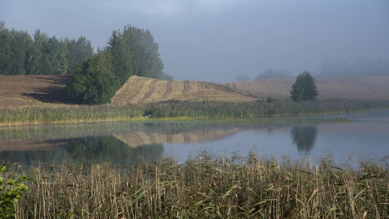 Zimna końcówka lata (fot. Forum/Andrzej Sidor)