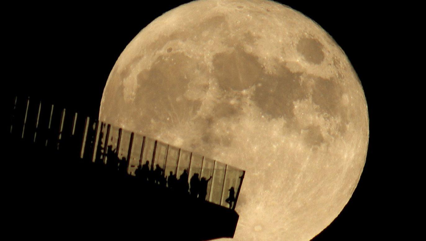 Księżyc wykazuje się bardzo małą aktywnością sejsmiczną (fot. Gary Hershorn/Getty Images)