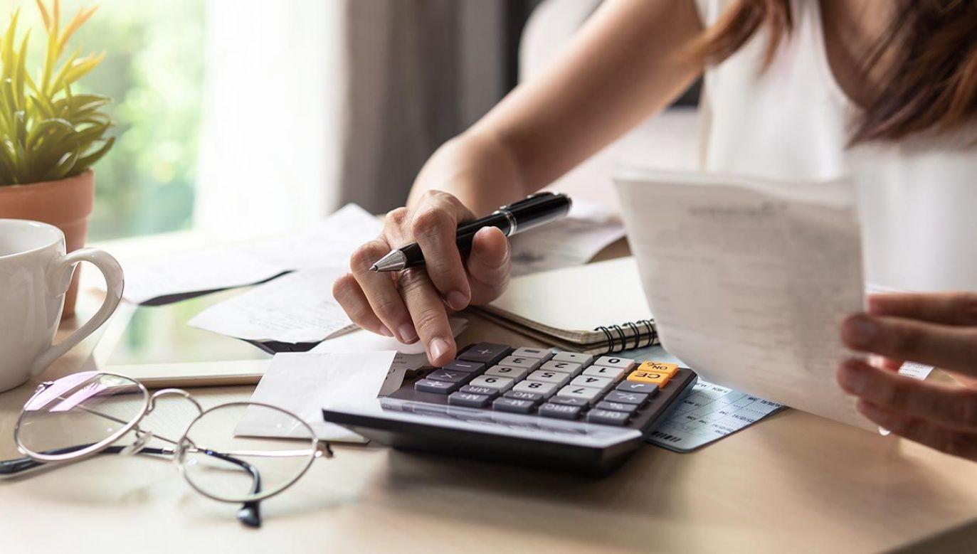 Komisja Budżetu i Finansów Publicznych zarekomendowała przyjęcie ustawy bez zmian (fot. Shutterstock/kitzcorner)