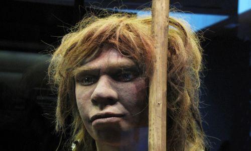 Rekonstrukcja neandertalskiej kobiety z jaskini Sidon w Asturii, sale prehistorii w National Archaeological Museum w Madrycie, Hiszpania. Fot.  Cristina Arias / Cover / Getty Images