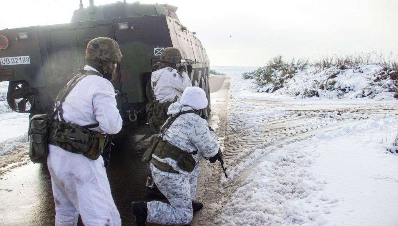 Ćwiczenia Wojska Polskiego (fot.TT/Ministerstwo Obrony Narodowej)