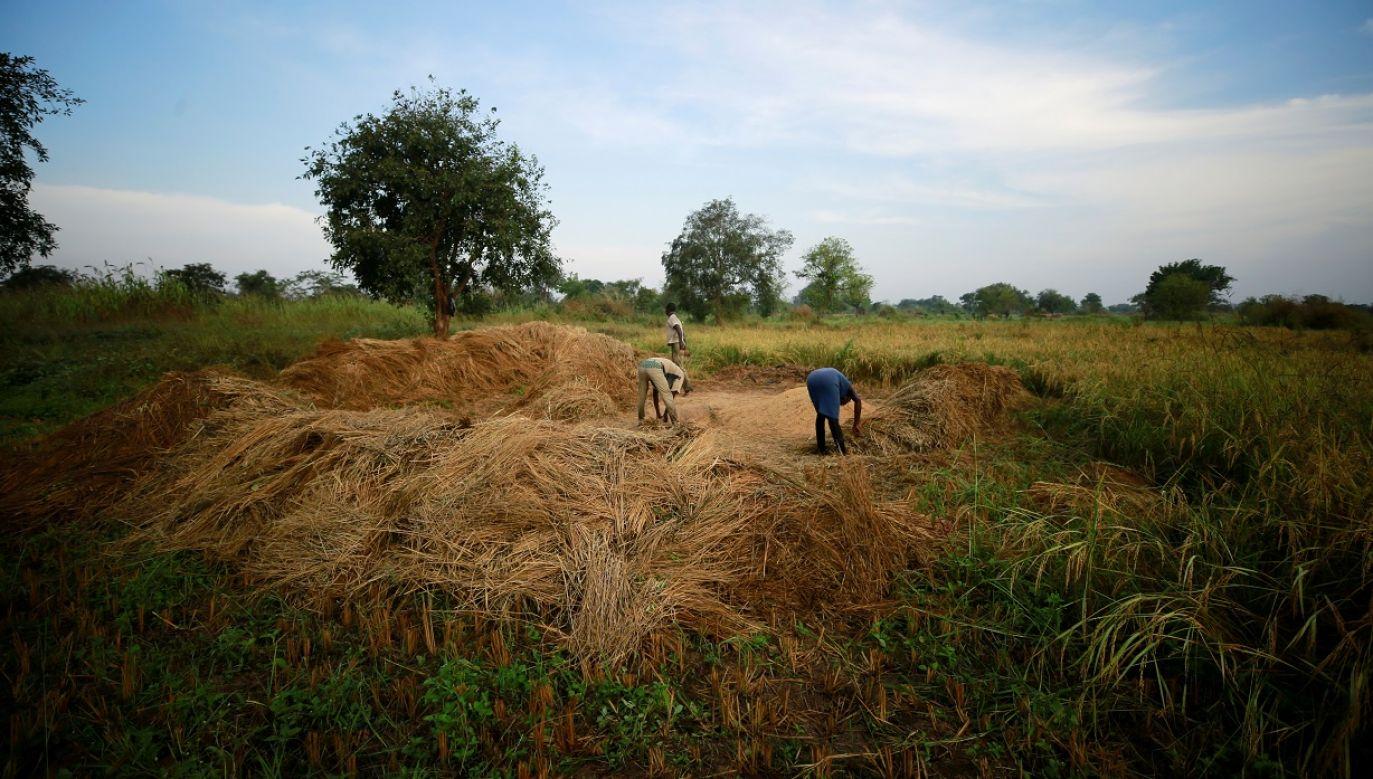Ośmiu rolników zostało porwanych (fot. Reuters/Afolabi Sotunde)