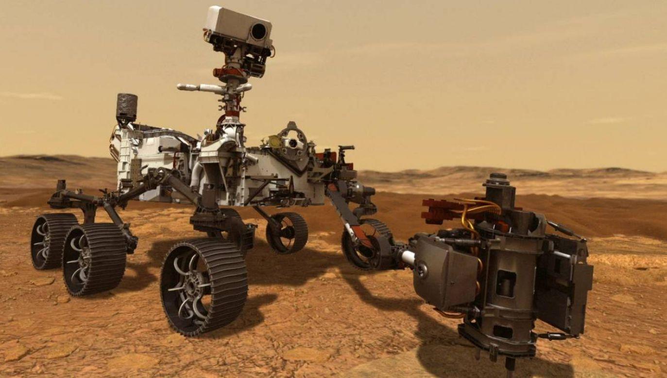 Łazik Perseverance będzie realizował swoją misję (fot. NASA)