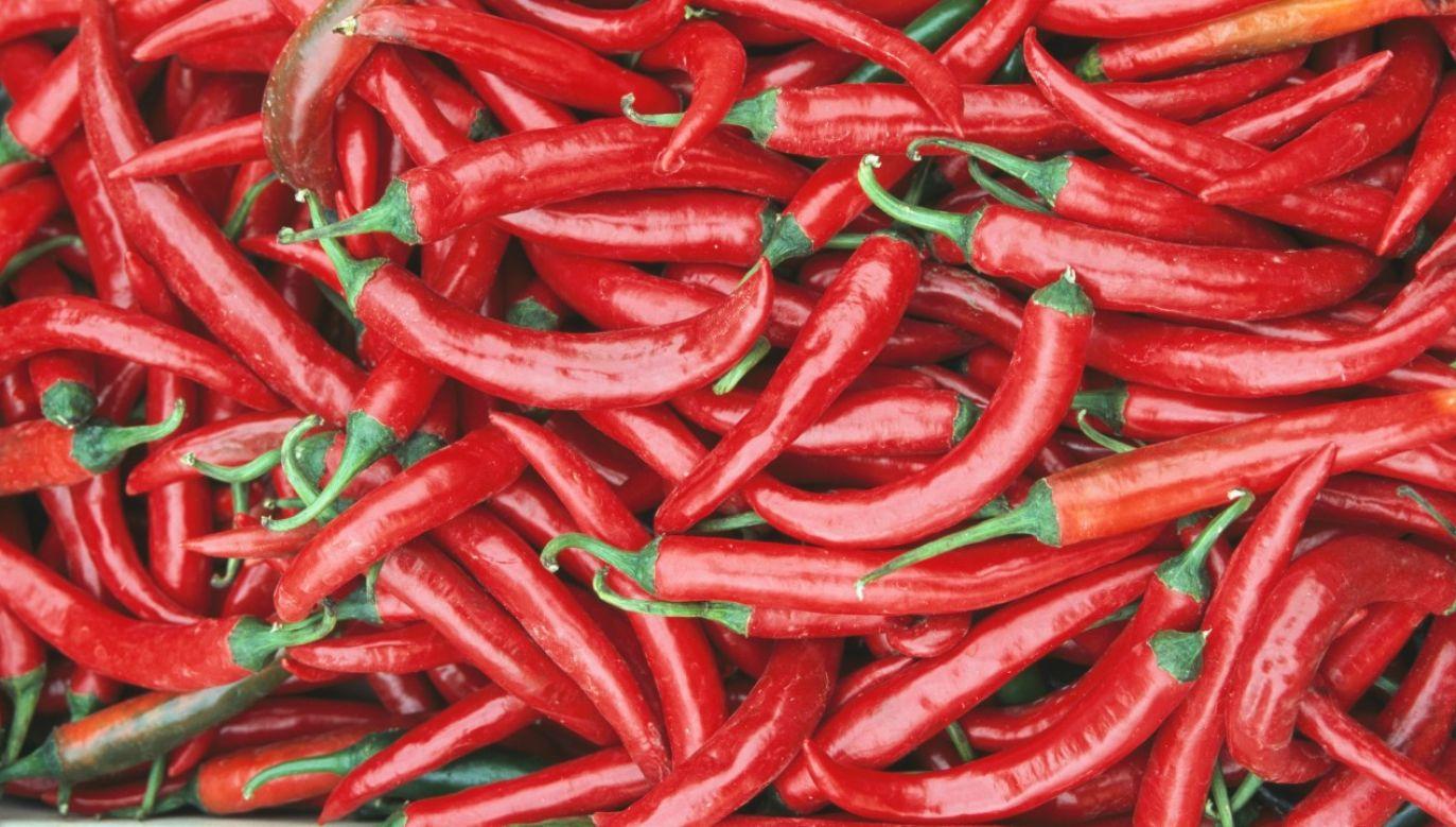 Warto polubić pikantny, czy czasem wręcz ostry, smak papryczek chili (fot. DEA / V. GIANNELLA / Contributor / Getty Images)