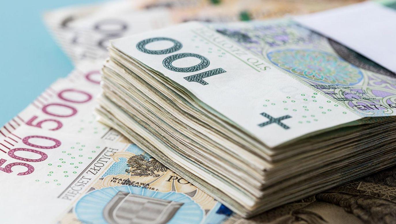 Nowy program ma wpłynąć na kwestie podatków (fot. Shutterstock/Andrzej Rostek)