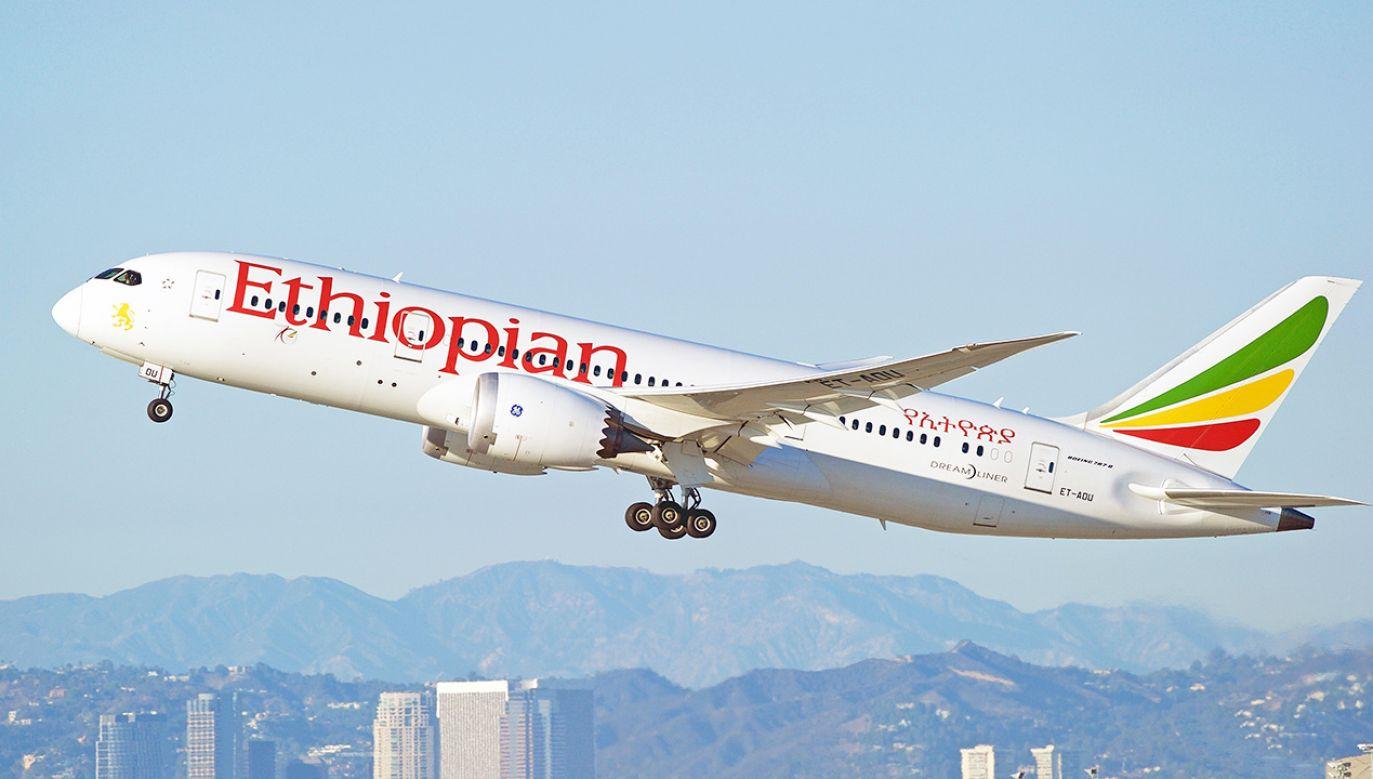 Etiopskie linie lotnicze to największy przewoźnik w Afryce (fot. Shutterstock/Philip Pilosian)