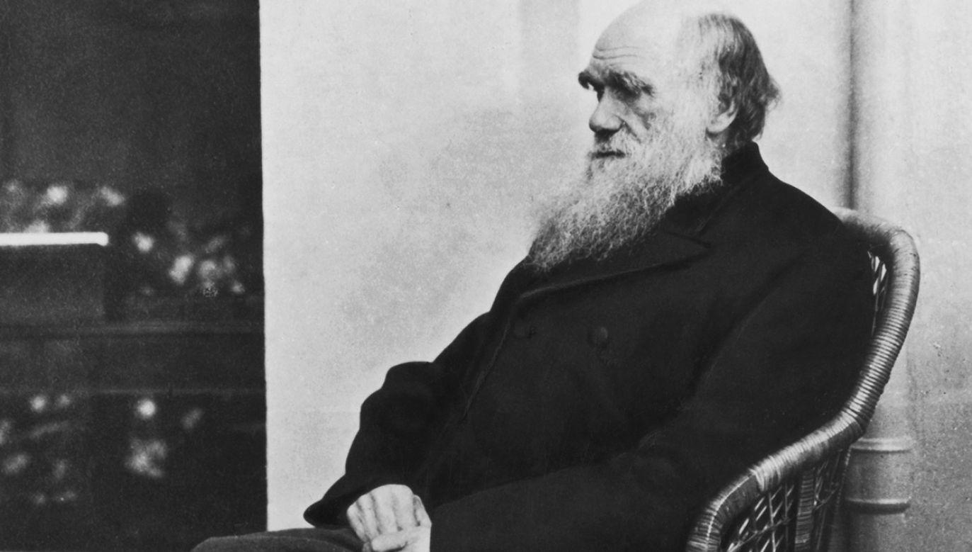 Karol Darwin jest twórcąteorii ewolucji (fot. H.P. Robinson)