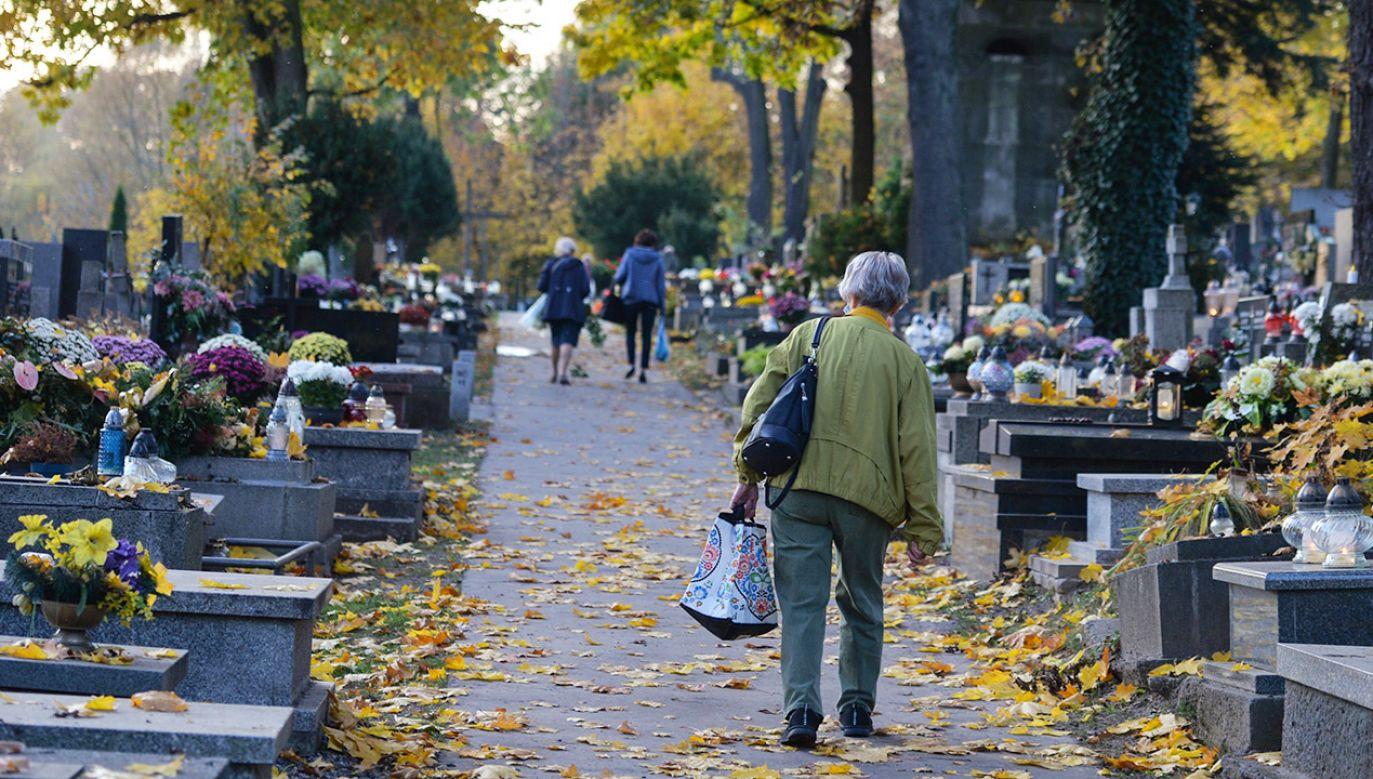 Do 1 listopada został tydzień (fot. Artur Widak/NurPhoto/Getty Images)