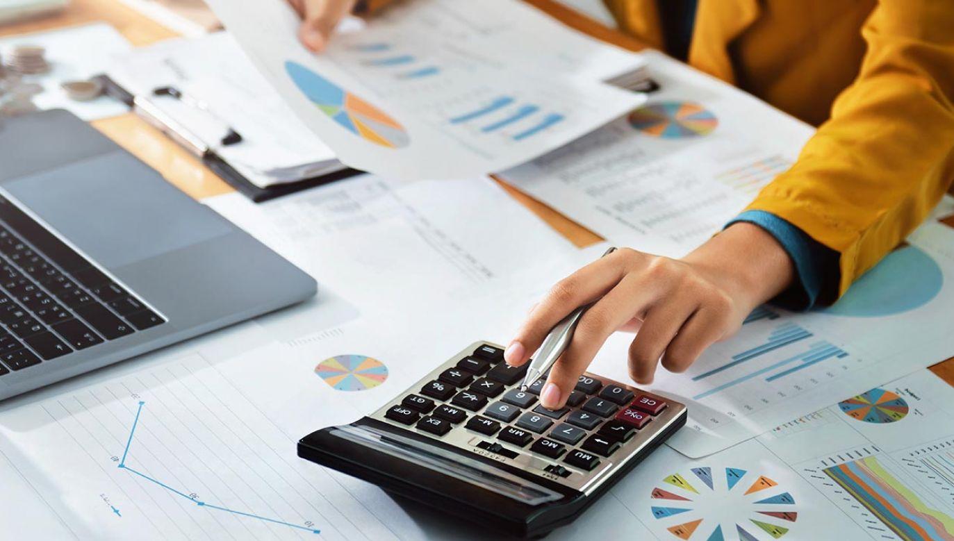 Rząd przyjąłzmiany w podatku od wielkich korporacji (fot. Shutterstock/lovelyday12)