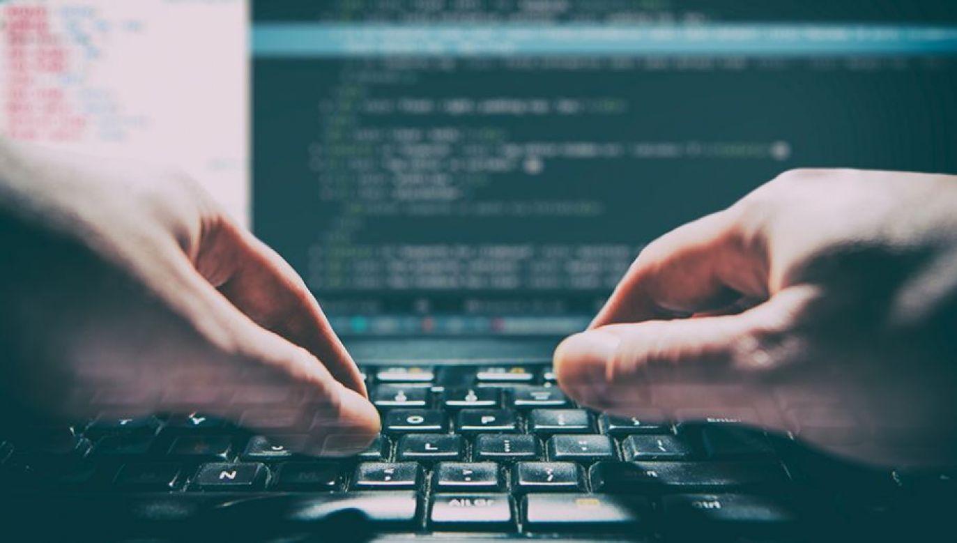 Cyberprzestępcy długo nie nacieszyli się wolnością (fot. shutterstock/REDPIXEL.PL)