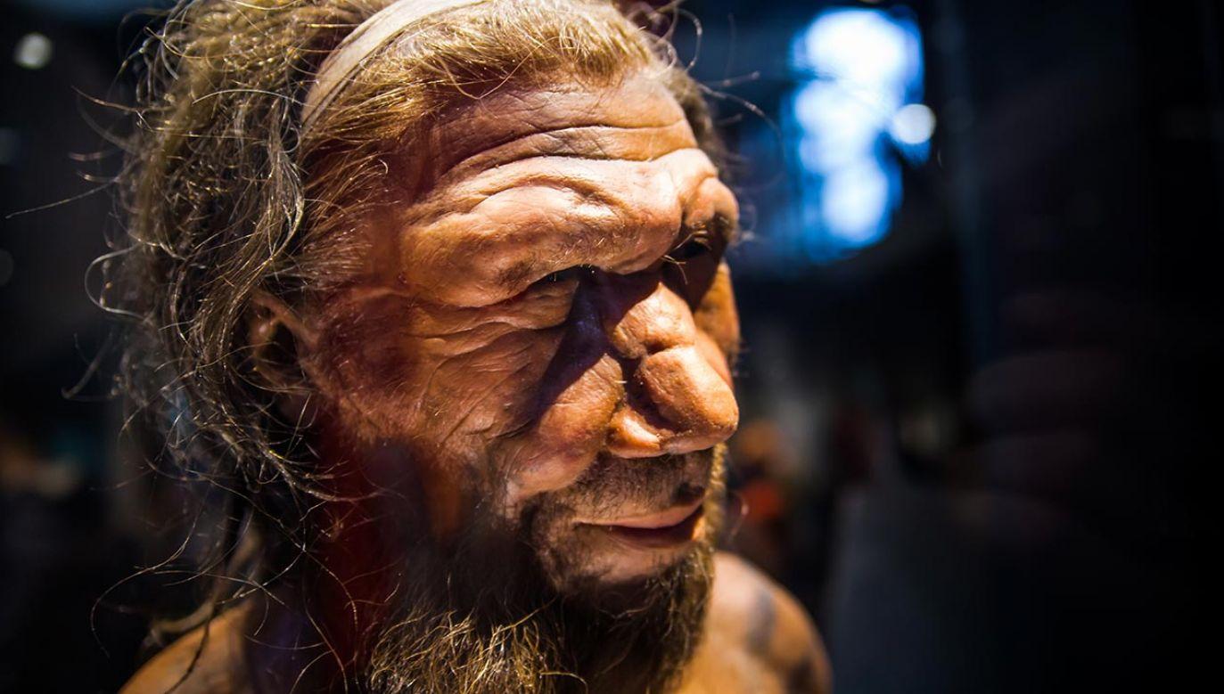 Zrozumienie dróg ludzkiej historii rozpala serca i umysły    (fot. Shutterstock/IR Stone)