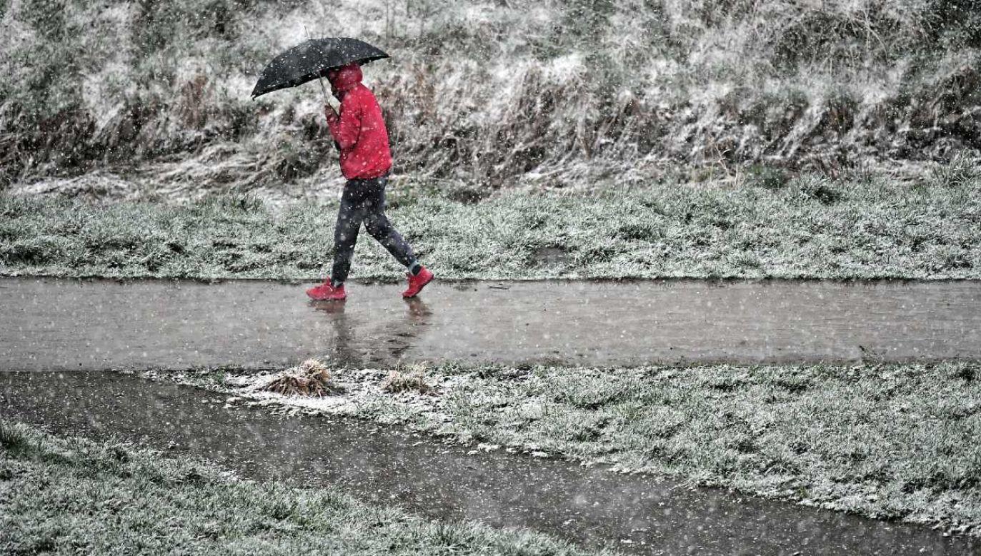 Temperatura spadnie poniżej zera (fot. PAP/Maciej Kulczyński)