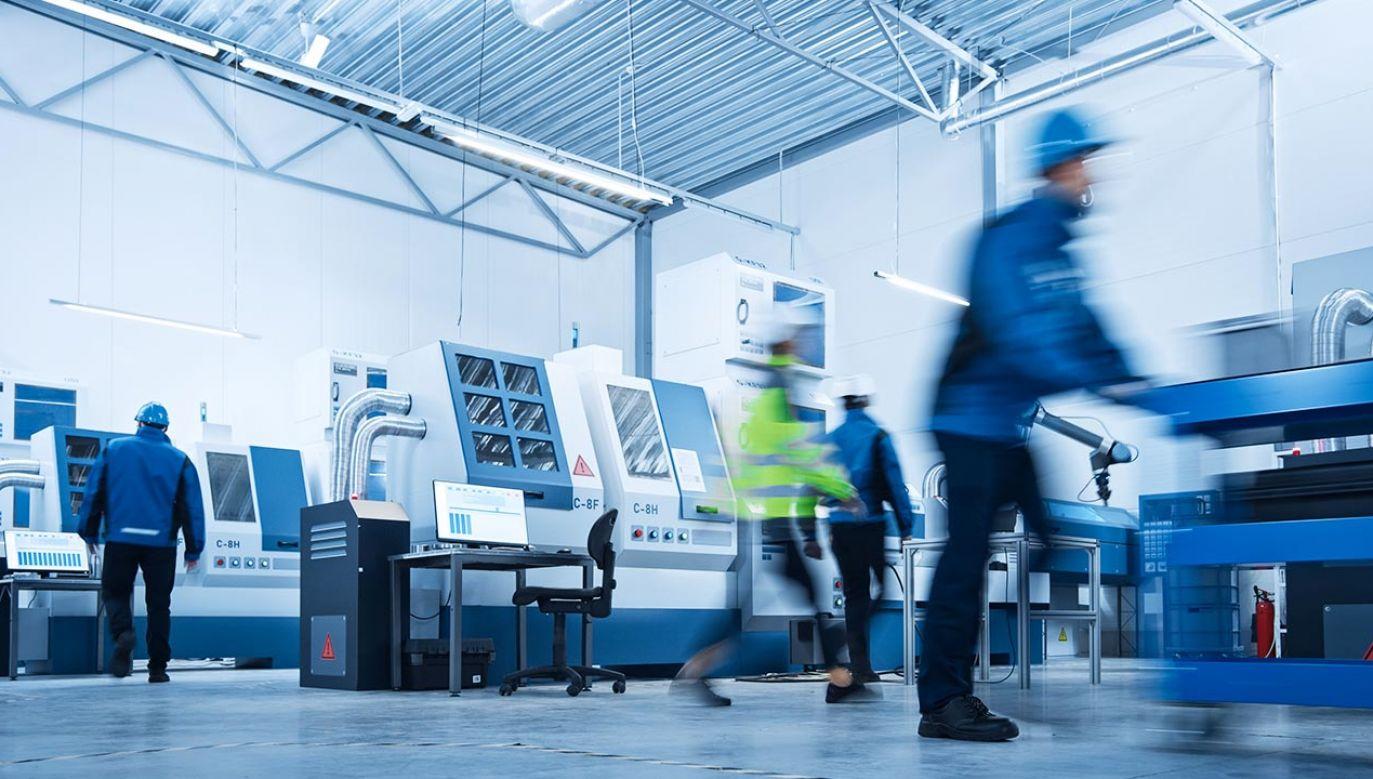 Maj na rynku pracy (fot. Shutterstock/Autor: Gorodenkoff)