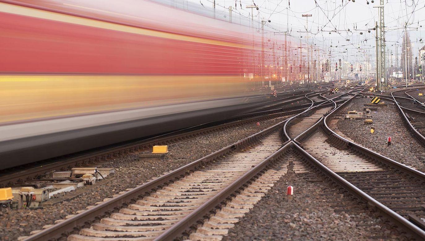 Współpracę nawiązały już PKP Intercity i PKS Polonus (fot. Shutterstock/Vytautas Kielaitis)
