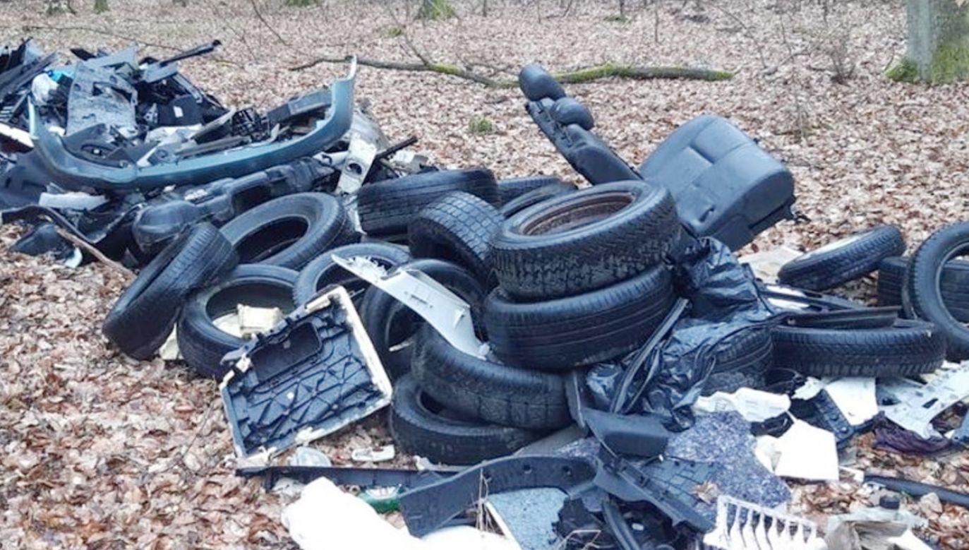 Leśny śmieciarz ukarany (fot. Nadleśnictwo Międzychód)
