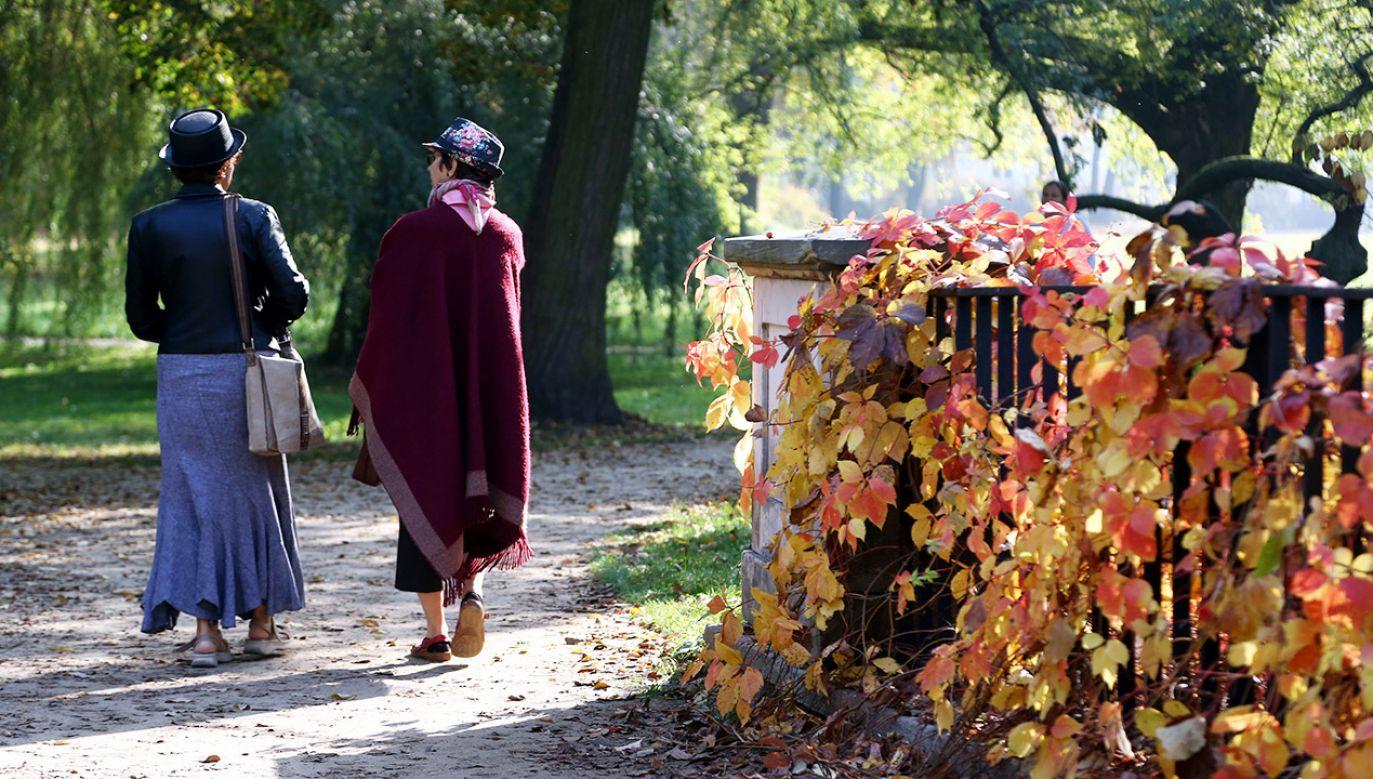 Prognoza pogody: od poniedziałku do niedzieli | 25 – 31 października (fot. arch.PAP/Tomasz Gzell)