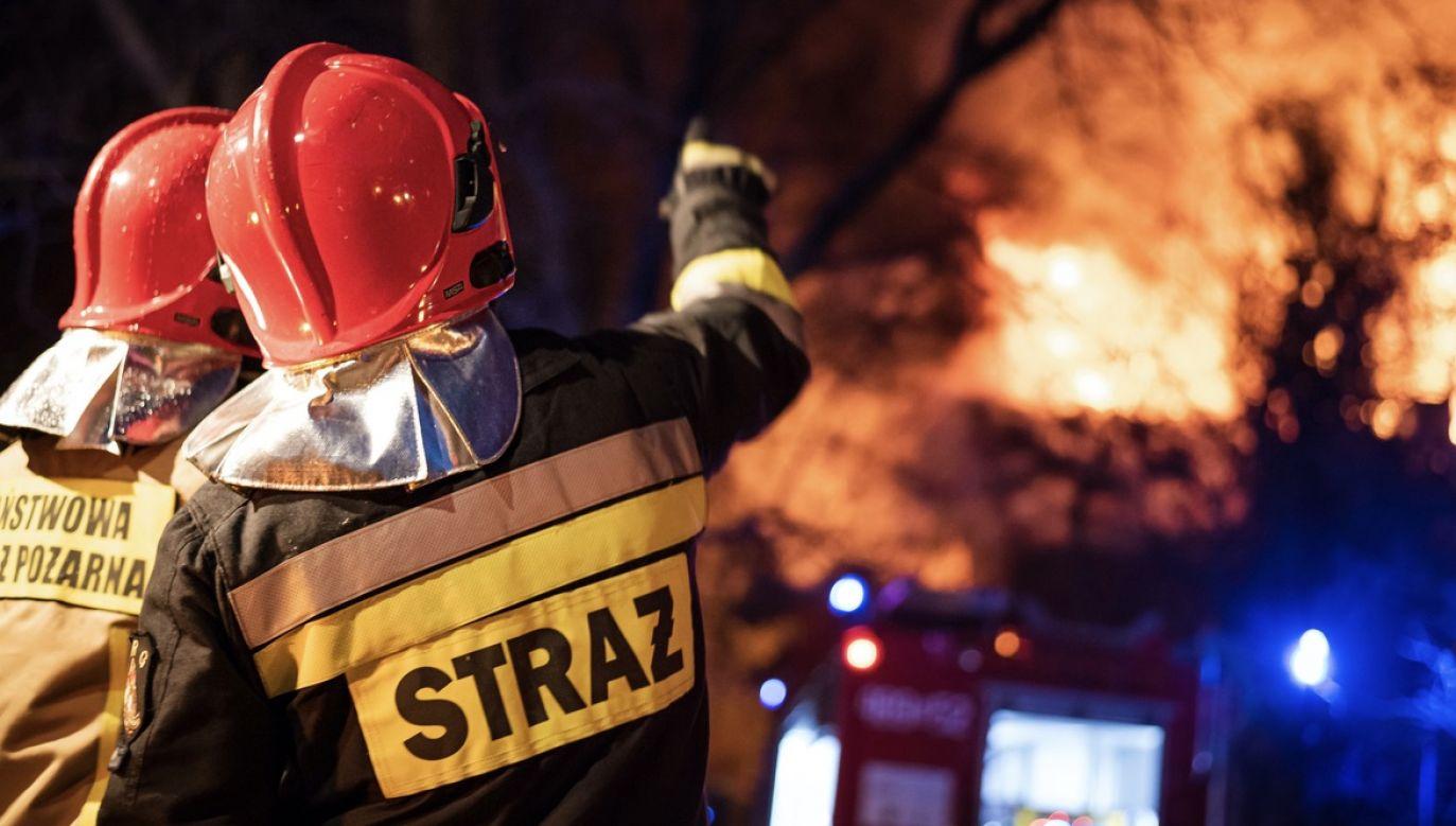 Z ogniem walczyło 11 zastępów straży (fot. Shutterstock/Dziurek)