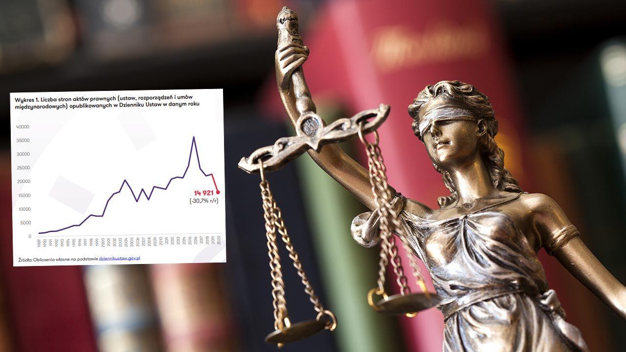 W ostatnich lat spada liczba stron uchwalanych aktów prawych – wynika z raportu (fot. Shutterstock/sebra; barometrprawa.pl)