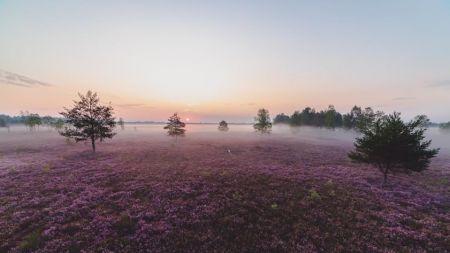 Pod wieczór możliwe większe przejaśnienia (fot. Lasy Państwowe)