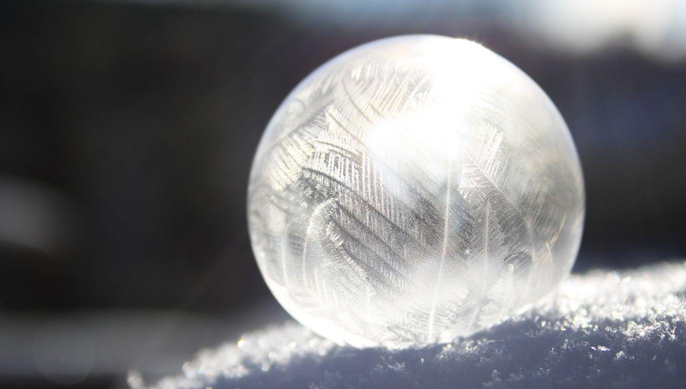 Lód pokrywa kamienie albo fragmenty roślin (fot. shutterstock/By DihooTro)