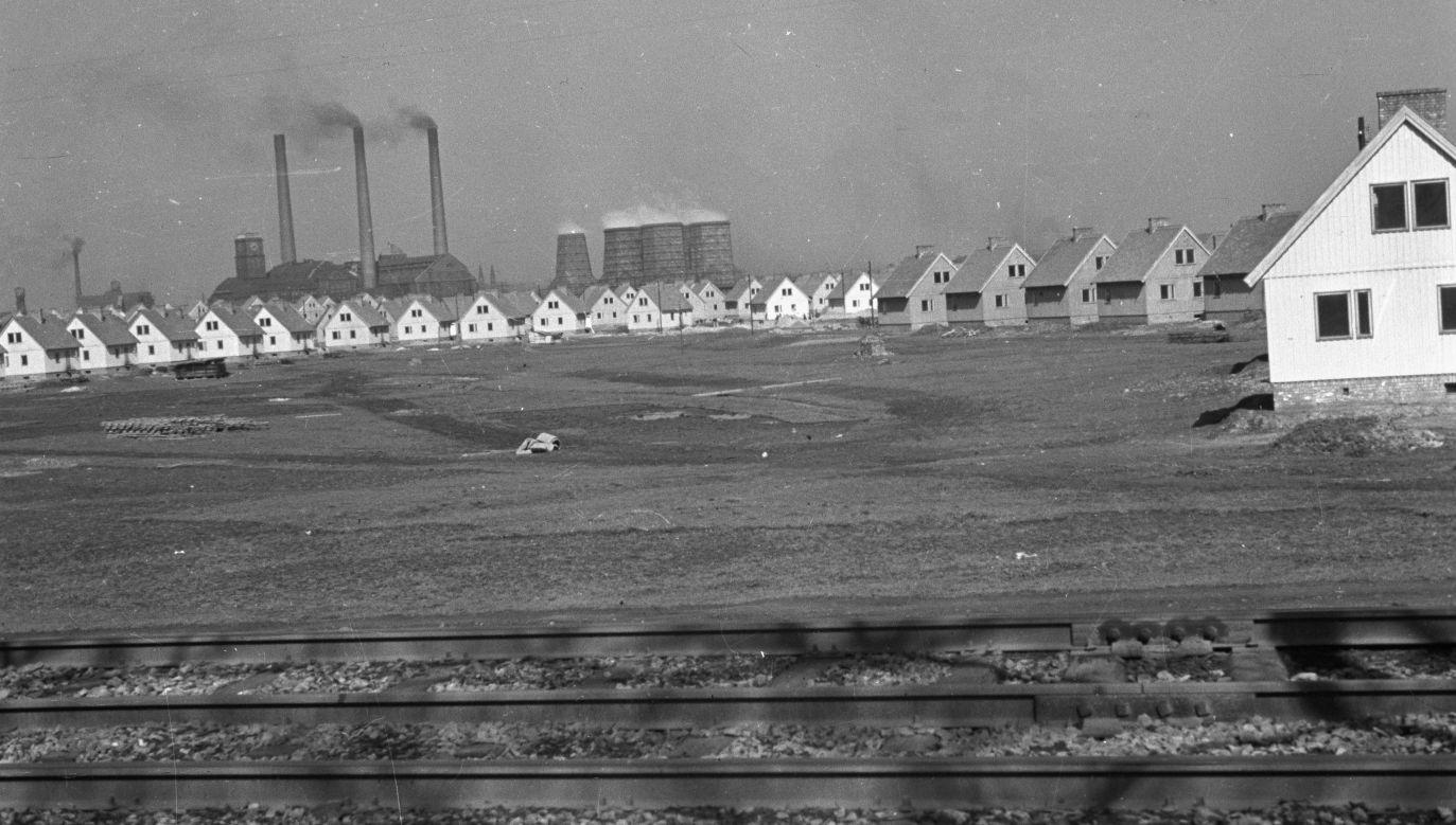 Bytom, maj 1948. Kolonia kilkudziesięciu  domków fińskich czekających na górników. Fot. PAP