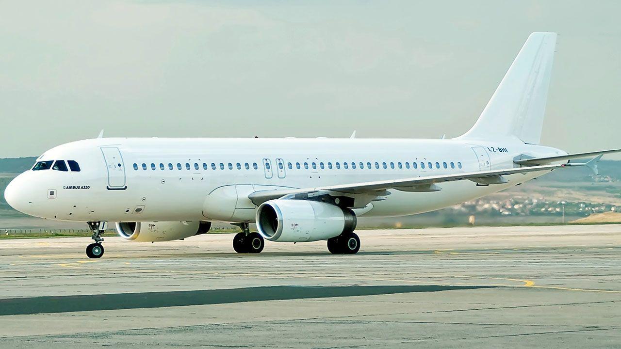 Sprawdzanie samolotu pod kątem zagrożenia wybuchem zakończyło się około godz. 19. (fot. Shutterstock/Miglena Pencheva, zdjęcie ilustracyjne)