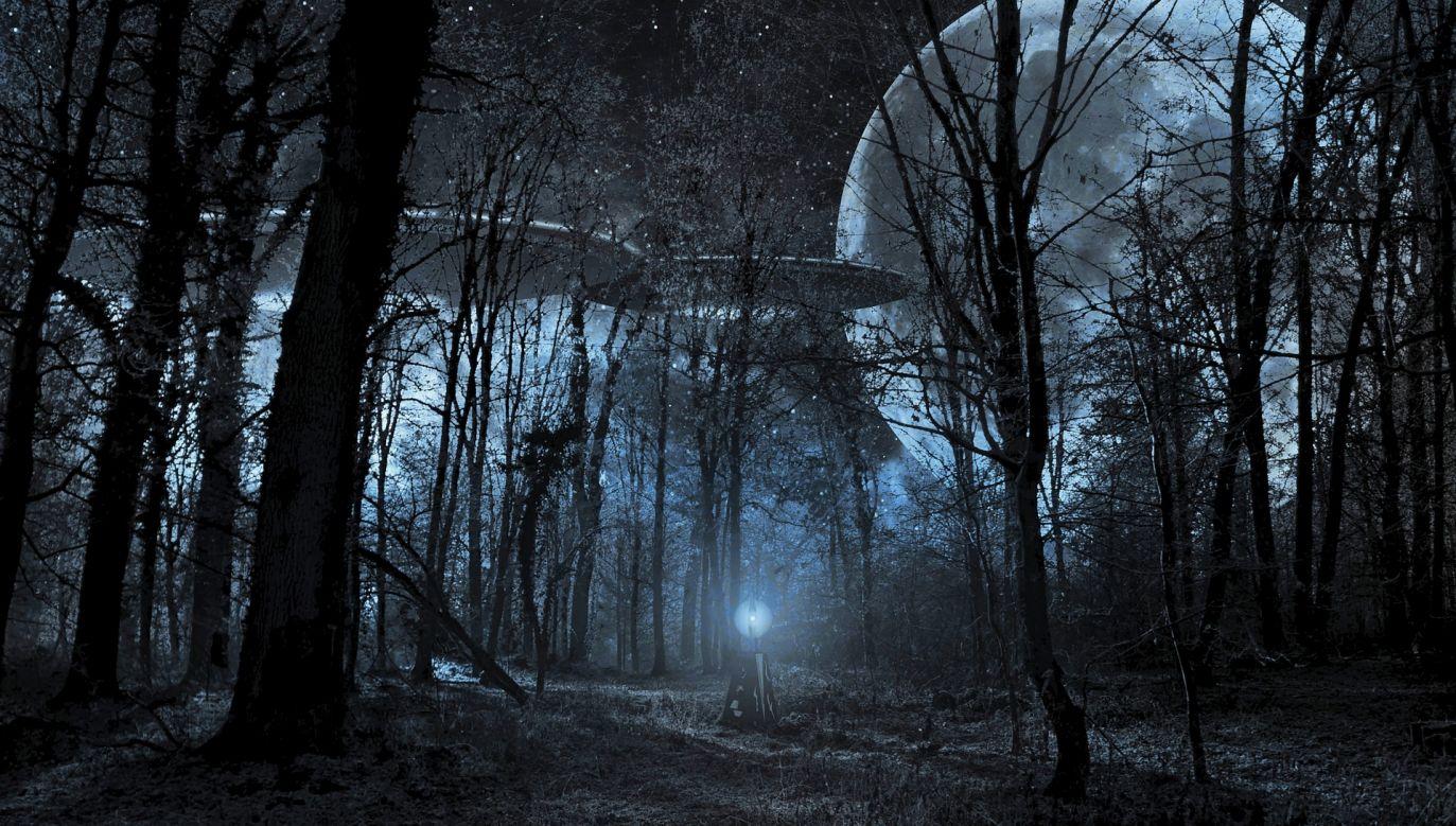 Twierdzi, że domniemani kosmici to zwykli ludzie (fot. pixabay/tombud)