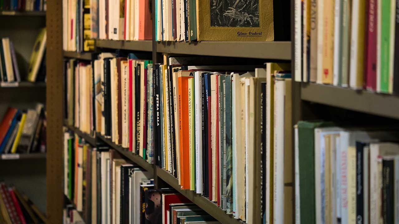 """""""Dzisiaj internet umożliwia łatwy dostęp do wielu informacji, ale to lektura słowa drukowanego pomaga pogłębić wiedzę i rozbudza ciekawość"""" (fot. Shutterstock/Thanida Siritan)"""