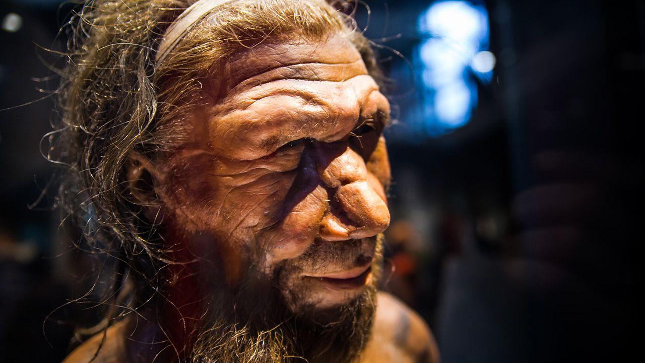 Odkrycia dokonano na terenie złoża archeologicznego Abric Romani (fot. Shutterstock)