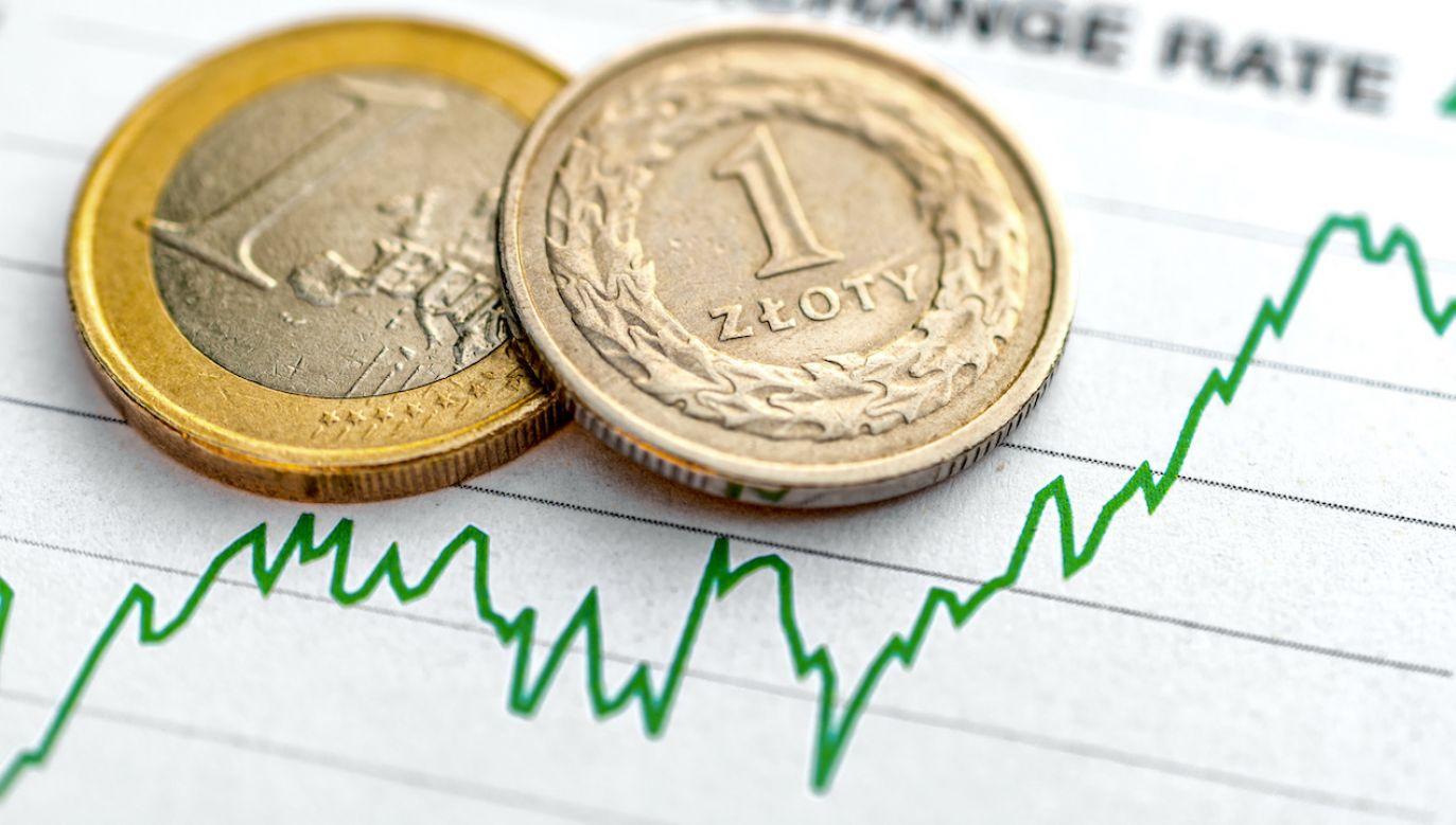 Kursy walut NBP (fot. Shutterstock/parlanteste)