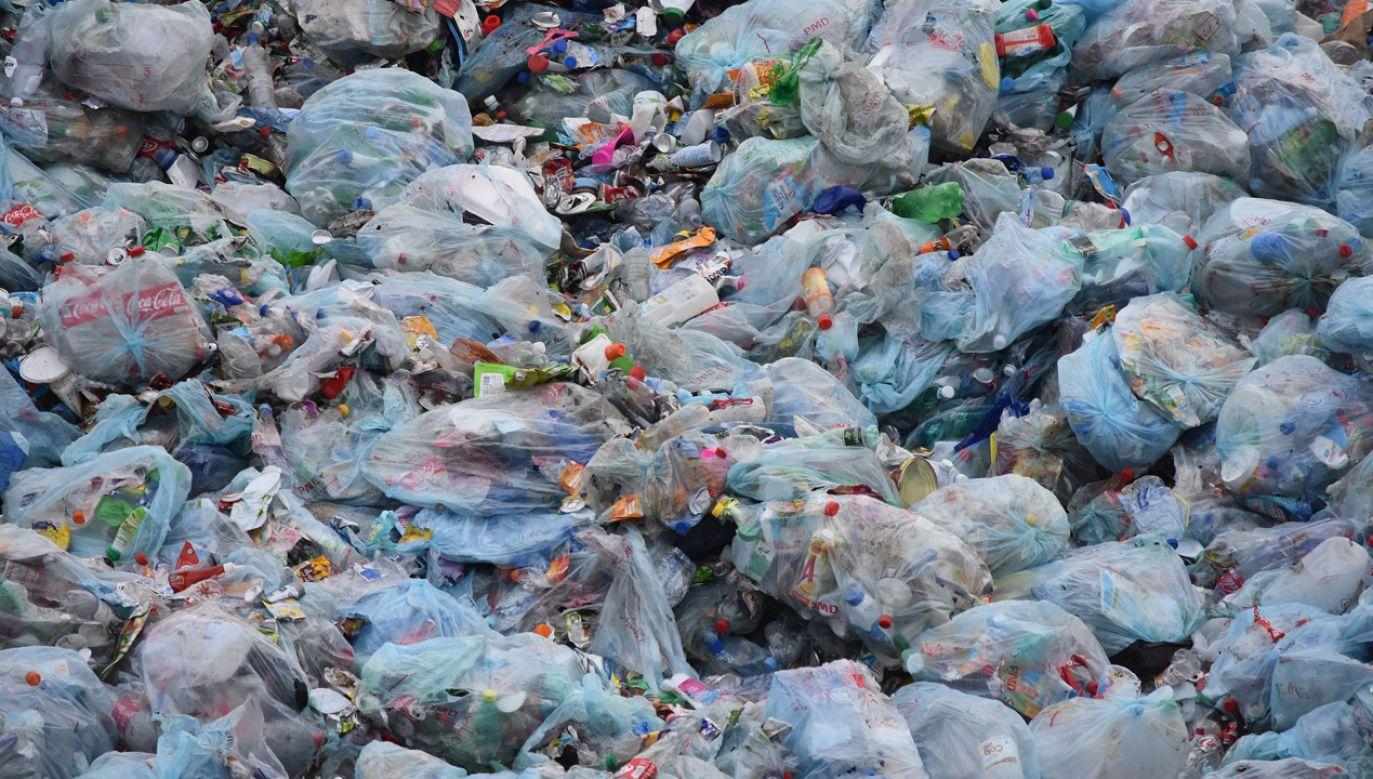 Od nowego roku stawki za wywóz odpadów wzrosną kilkakrotnie (fot. PixabayBen_Kerckx)