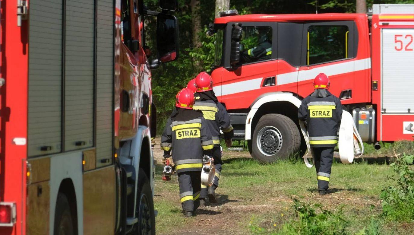 Interweniowali strażacy (fot. PAP/Andrzej Grygiel)
