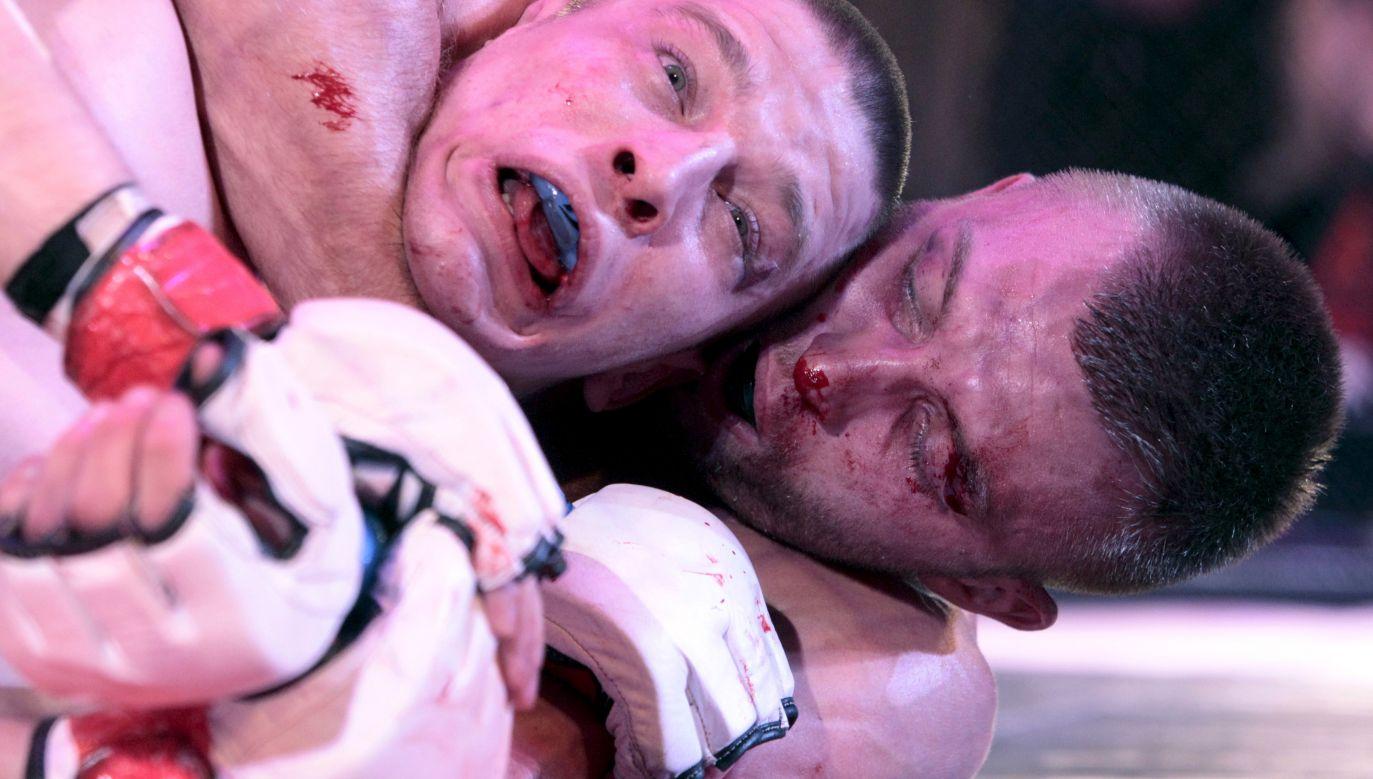 Międzynarodowe zawody w Mieszanych Sztukach Walki (Mixed Martial Arts, MMA) w rosyjskim Stawropolu w lutym 2016 roku. Fot. REUTERS/Eduard Korniyenko