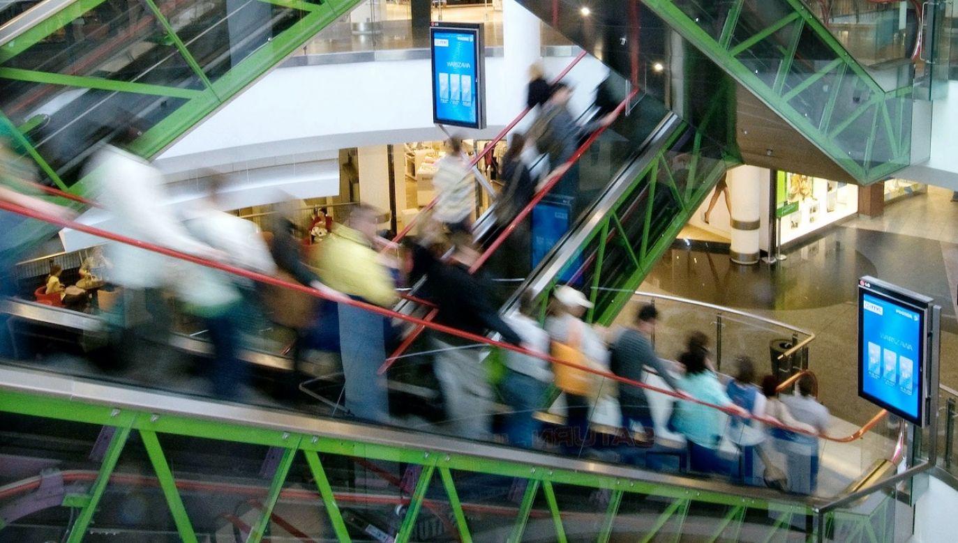 Gdyby zakazy handlu determinowały zapaść na rynku pracy, widzielibyśmy jakiś chronologiczny i lokalizacyjny związek między tymi wydarzeniami (fot. John Guillemin/Bloomberg via Getty Images)