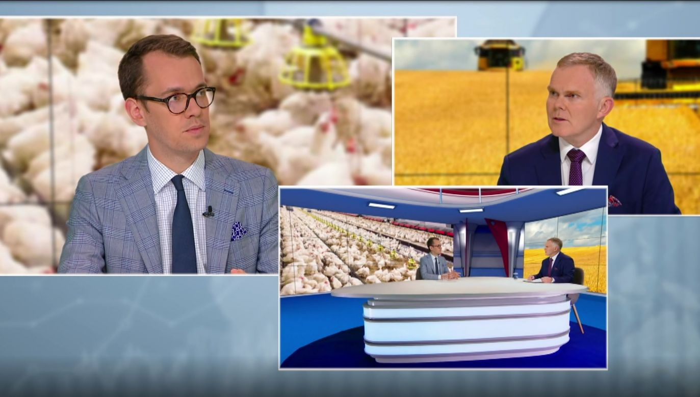 Jakub Olipra, Credit Agricole Bank discussing food inflation with David Kennedy, PolandIN